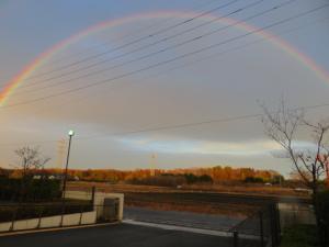 『虹1』の画像