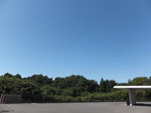 『晴天』の画像